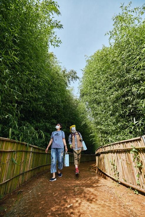 4-5-4 대나무숲길